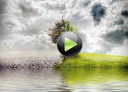 Возможности технологий микробных препаратов в экологизации сельского хозяйства