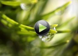 Натуральное сельское хозяйтсво - экоферма. ЭкоФерма 2 серия