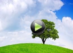 Сложности внедрения биологических препаратов в сельскохозяйственные производства